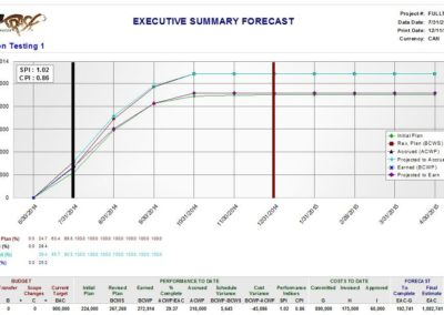 Executive Summary Forecast